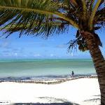 spiaggia fronte jacaranda!