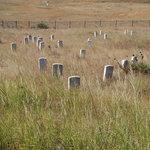 Battle Field at Little Big Horn