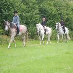 Foto de The Rock Equestrian Farm Bed & Breakfast