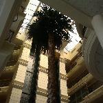 塞浦路斯希爾頓酒店照片