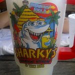 Sharky's Beachfront Restaurant Foto
