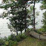 Looking towards the lake