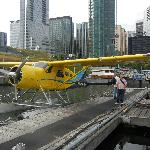 Seaplanes bound for Victoria & other islands.