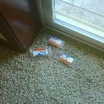 ant traps on floor