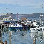View of marina area off Fisherman's Wharf in San Fran Bay