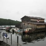 "Nearby Holderness Marina on Little Squam Lake...filming location for ""On Golden Pond"""