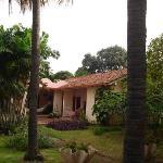 Foto di Los Mapachines Terraza Hotel