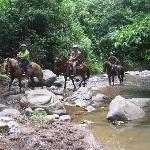 Horseback ride to waterfall.
