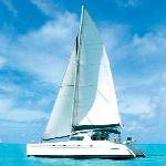 Cool Cat under sail