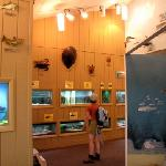 Inside the Cooper Environmental Center