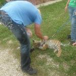 My husband and the baby tiger!