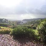 Views from Poppy Room