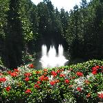 The fountain and flowers in the Sunken Garden are wonderful