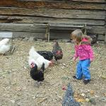 Laughing at the Chickens at Clear Creek Park