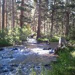 Creek below resort