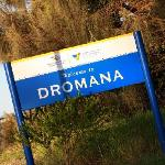 Welcome to Dromana !!
