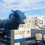 Photo of La Vaca Azul