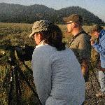 Viewing moose with viewing scopes