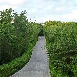 View of the pathway from our building to the hotel lobby/shop area