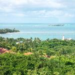 Vista desde el Mirador del Jardin Botanico