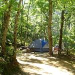Tent camping at Sweetwater Forest-Tents only-No RVs Allowed