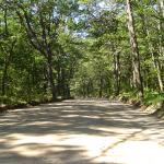 Sweetwater Forest Main Road-Nature's Welcome to relaxation & fun!