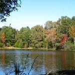 Pine Grove Lake