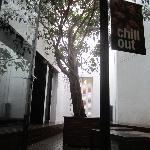 Foto de Hostal Gat Xino