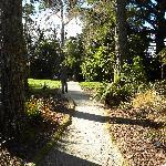 Path through grounds to Tongariro River