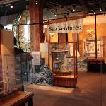 Some of the museum displays