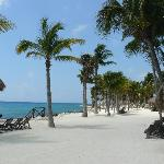 Xcaret Eco Park - Local Trip on Resort