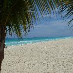 beach in Playa de Carmen