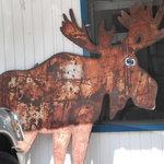 Foto di The Cross-Eyed Moose Cafe