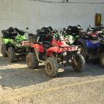 Some of the quads available.