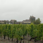 Chateau & Vineyards