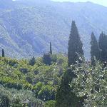 Verona Hills