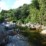 La rivière du chemin botanique du camping