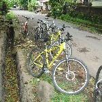 the bikes!