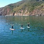 SUP in Port San Luis Harbor area of Avila Beach!