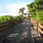 Boardwalk behind the hotel