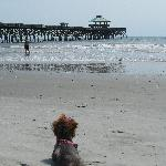 Tides Folly Beach Foto