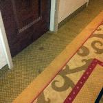 Carpet in front of our room