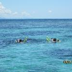 Snorkeling in the Beautiful Caribbean