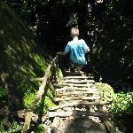 Climbing down a wooden ladder