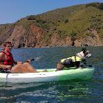 kayaking corgi