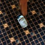 Beer can in 5th fl lobby. Stay classy Radisson