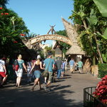 Photo of Tiki Juice Bar