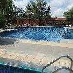 swimming pool in jaypee palace agra