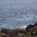 Rough fishing at Ramore Head