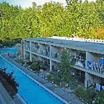 Podollan Inn Room 308 view of pool